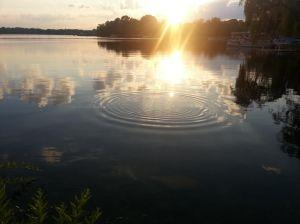 ripple effect 1